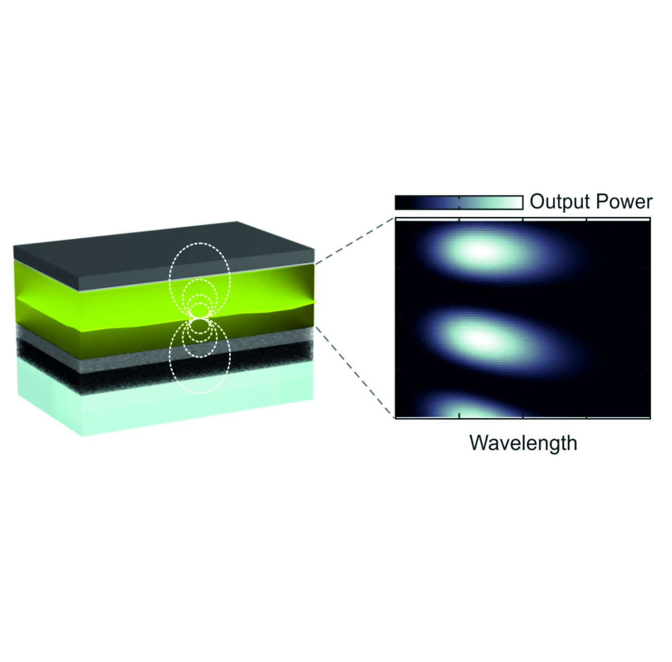 Dipole reorientation and local density of optical states influence the emission of light-emitting electrochemical cells